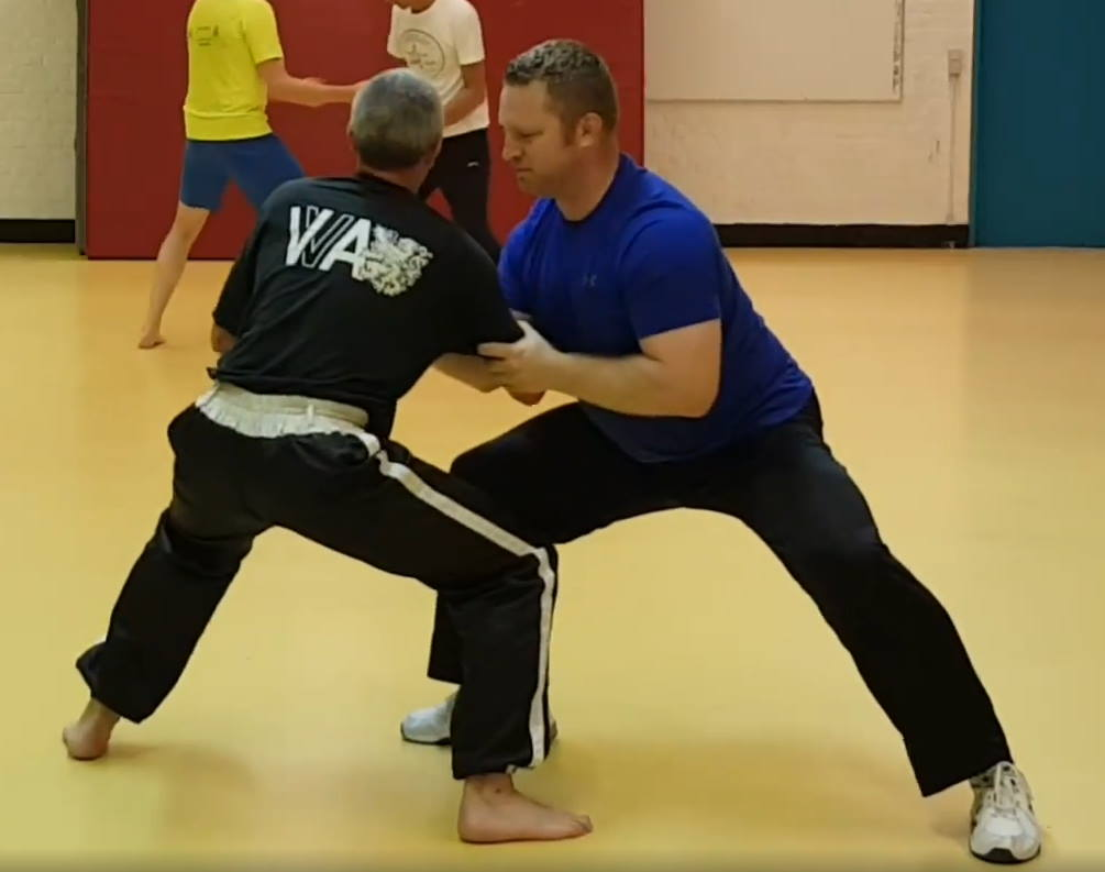 online tai chi chuan pushing hands for self-defense