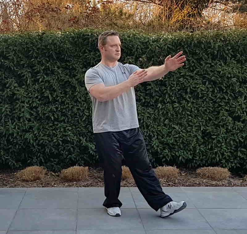 learn tai chi chuan online with wim demeere
